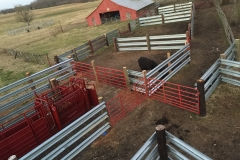 LiveStock Steel Guardrail Corral Installation